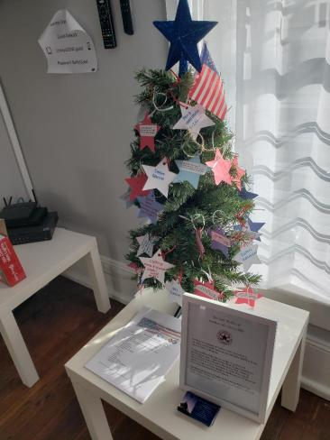 The Blue Star Mothers of Northern New Jersey-NJ6 giving tree at the school!